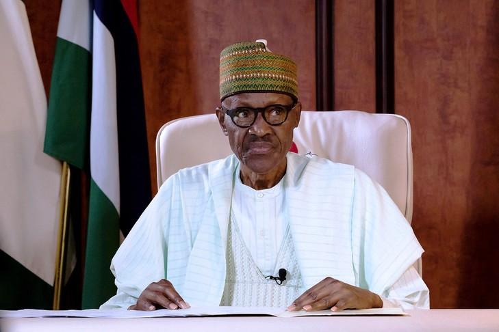 Nigéria : d'après Buhari, la réouverture des frontières va encore attendre  | ActuNiger