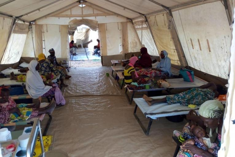 Paludisme : le Niger enregistre 2449 décès à la date du 07 octobre 2020 (Gouvernement)
